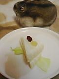 ケーキちぇだーちーず添え